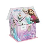Coin Bank (House-Big) Frozen